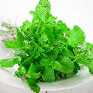 HOW TO STORE FRESH MINT AND OTHER FRESH HERBS
